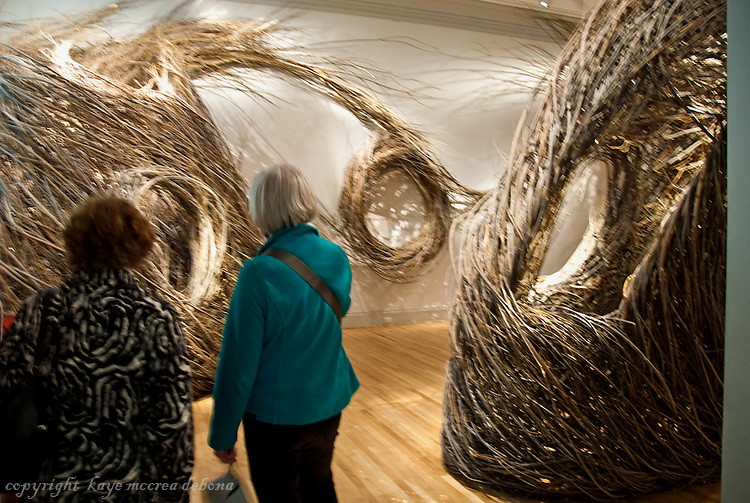 """Wonder"" is the inaugural exhibition at the Renwick Gallery in Washington D.C. - Artist Patrick Douglas"