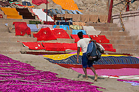 Indian man doing laundry using the waters of The Ganges River at Kali Ghat in City of Varanasi, Benares, India