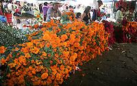 D&iacute;a de Muertos en Guanajuato. .Celebraci&oacute;n mexicana de origen prehisp&aacute;nico que honra a los difuntos el 2 de noviembre, comienza el 1 de noviembre, y coincide con las celebraciones cat&oacute;licas de D&iacute;a de los Fieles Difuntos y Todos los Santos..Dia de Muertos,Festividades,religi&oacute;n,tradicion.<br /> (NortePhoto)