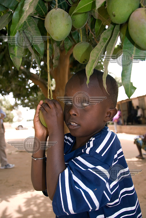 Abdoulie Chandoum, who is blind and out of education, under a mango tree.