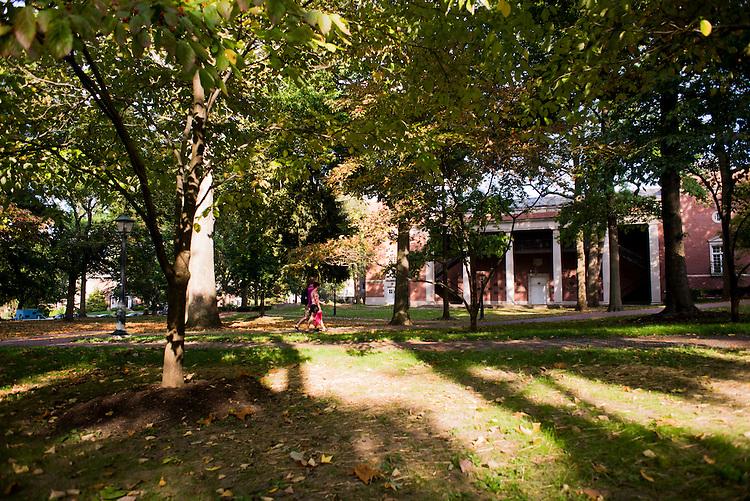 Light falls on students walking across College Green.