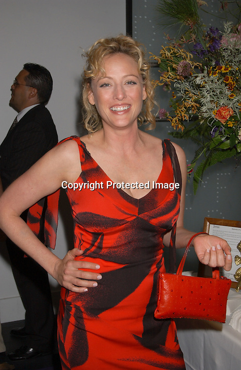 Virginia Madsen in Diane von Furstenberg dress                               ..at the Humane Society of the United States Save the Seal ..Party on July 23,2003 at Diane von Furstenberg's Studio in ..New York City, New York.                                              Photo by Robin Platzer, Twin Images