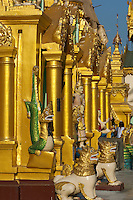 Some of the sixty smaller stupas which surround the giant stupa at the heart of the magnificent Shwedagon Paya or pagoda in Yangon, Myanmar, have turned a burnished crimson gold in the evening light.