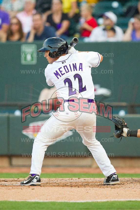Martin Medina (22) of the Winston-Salem Dash at bat against the Carolina Mudcats at BB&T Ballpark on July 25, 2013 in Winston-Salem, North Carolina.  The Mudcats defeated the Dash 5-4.  (Brian Westerholt/Four Seam Images)