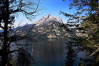 grand teton national park 2013