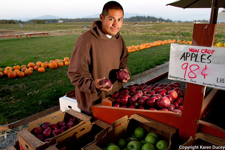 Danny Flores of Pure Nelida Farm, at Viva Farms, in Burlington, Wash. on September 24, 2012.  (photo by KarenDucey.com)