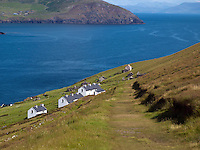 25-8-2014: A grassy path leads to The cafe on left and Peig Sayers former home on right which is now a hostel on the Great Blasket Island of West Kerry.<br /> Picture by Don MacMonagle
