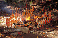 Freshly caught salmon  being cooked for lunch at Yurok fishing camp,  Klamath reservation, California