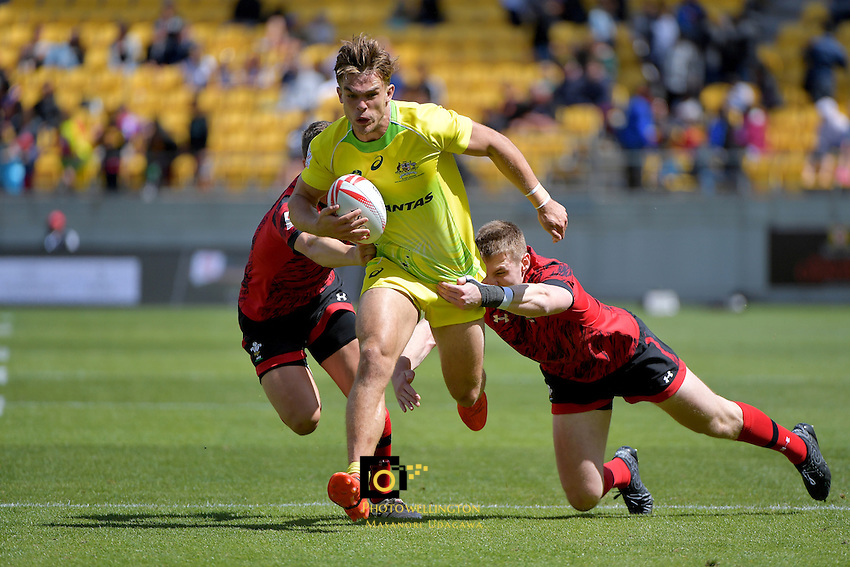 HSBC Wellington Sevens at Westpac Stadium, Wellington, New Zealand on Sunday 29January 2017.<br /> Photo by Masanori Udagawa<br /> www.photowellington.photoshelter.com.
