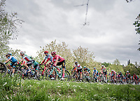 Maglia Rosa / overall leader Primoz Roglic (SVK/Jumbo-Visma) in the bunch<br /> <br /> Stage 3: Vinci to Orbetello (219km)<br /> 102nd Giro d'Italia 2019<br /> <br /> ©kramon