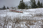 Idaho,North, Athol. The odd site of an old tug as it sits in a mountain meadow far from water on a snowy day in winter.