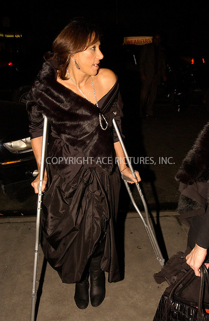 WWW.ACEPIXS.COM . . . . .  ....NEW YORK, FEBRUARY 2, 2005....Donna Karan at the AMFAR Event to Honor Herb Ritts held at Sotheby's.....Please byline: Ian Wingfield - ACE PICTURES..... *** ***..Ace Pictures, Inc:  ..Philip Vaughan (646) 769-0430..e-mail: info@acepixs.com..web: http://www.acepixs.com