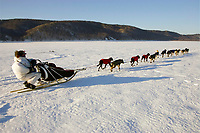Lance Mackey hunkers behind his sled as he runs on the Yukon River on Saturday between Eagle Island and Kaltag in a 35-45 mph headwind