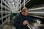 POLAND, Masovian Voivodeship, Huszlew, Grzybek Losicki mushroom cultivation and marketing, mushroom breeder  / POLEN, Masowien, Huszlew, Grzybek Losicki, Champignon Pilz Erzeugergemeinschaft, Pilzzuchtbetrieb