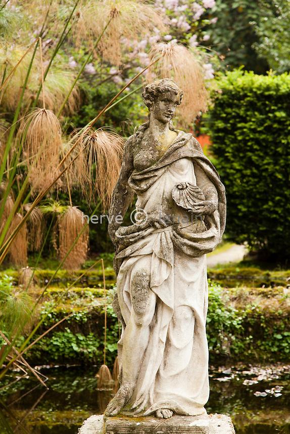France, Alpes-Maritimes (06), Menton, jardin Serre de la Madone :.nymphe dans le bassin et papyrus égyptien (Cyperus papyrus).