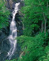 White Oak Falls #1; Shenandoah National Park, VA