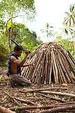 PHILIPPINES, Palawan, Barangay region, young Batak man will burn this wood pile to make charcoal in Kalakwasan Village