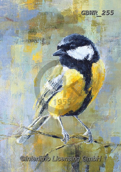 Simon, REALISTIC ANIMALS, REALISTISCHE TIERE, ANIMALES REALISTICOS, innovative, paintings+++++A_ValerieDeRozarieux_GreatTit,GBWR255,#a#, EVERYDAY