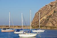 California, Morro Bay, Morro Rock and Sailboats
