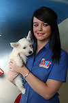 Westie puppy at the Pet Centre, Boyne Shopping Centre, Drogheda...Photo NEWSFILE/Jenny Matthews.(Photo credit should read Jenny Matthews/NEWSFILE)....This Picture has been sent you under the condtions enclosed by:.Newsfile Ltd..The Studio,.Millmount Abbey,.Drogheda,.Co Meath..Ireland..Tel: +353(0)41-9871240.Fax: +353(0)41-9871260.GSM: +353(0)86-2500958.email: pictures@newsfile.ie.www.newsfile.ie.FTP: 193.120.102.198.