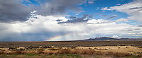 A northern Nevada panoramic filled with cloud painted sky, sagebrush, rolling hills, patches of rain, and a rainbow.