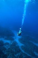 Scuba diver descending