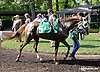 RB Burn Baby Burn before The Cre Run Oaks (gr 2) at Delaware Park on 9/1/14