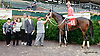 Vegas No Show winning The Ricci Tavi Stakes at Delaware Park on 9/16/13