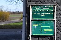 GERMANY, Halle, Martin-Luther Universitaet, Landwirtschaftliche Fakultaet, Lehr- u. Versuchsstation, Ewiger Roggenanbau seit 1878, gegruendet von Julius Kuehn