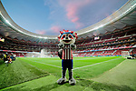 Atletico de Madrid's pet Indi during La Liga match between Atletico de Madrid and Getafe CF at Wanda Metropolitano Stadium in Madrid, Spain. August 18, 2019. (ALTERPHOTOS/A. Perez Meca)