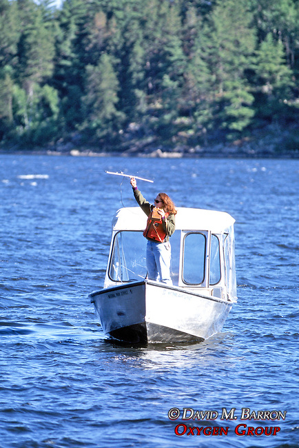 Kristina Timmerman Tracking Bear From Boat