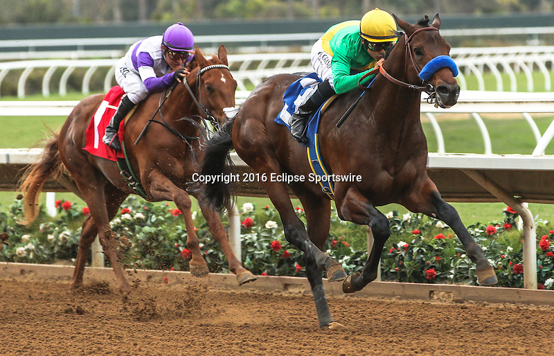DEL MAR, CA  NOVEMBER 19:  #3 Mastery, ridden by Mike Smith, leads #1 Ann Arbor Eddie, ridden by Mario Guttierez, in the Bob Hope Stakes (Glll) at Del Mar, Ca on November 19, 2016. (Photo by Casey Phillips/Eclipse Sportswire/Getty Images)