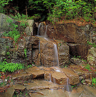 Scenic little waterfall tumbles over rocks and past bright green foliage. New Hampshire.