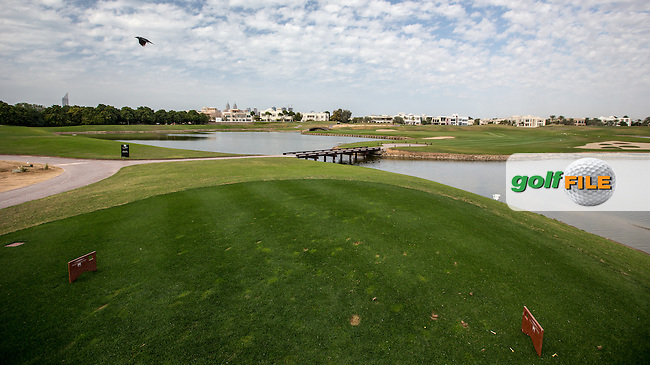 One of many views from numerous tees to the 13th at The Address Montgomerie Golf Club, Dubai, United Arab Emirates.  27/01/2016. Picture: Golffile | David Lloyd<br /> <br /> All photos usage must carry mandatory copyright credit (&copy; Golffile | David Lloyd)
