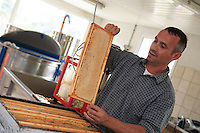 Work in the honey house is very methodical: shallow frames pass one by one through an uncapping machine. Into the vat fall the caps and a tiny amount of honey to be recovered later, each frame is inspected manually to ensure it has been completely uncapped,  frames are placed in a rotary extractor, where honey is extracted. Honey is then filtered to remove wax particles. Afterwards, it is aged for several days at a constant temperature to let the air and last wax residue rise to the surface, then is poured into pots or jars.