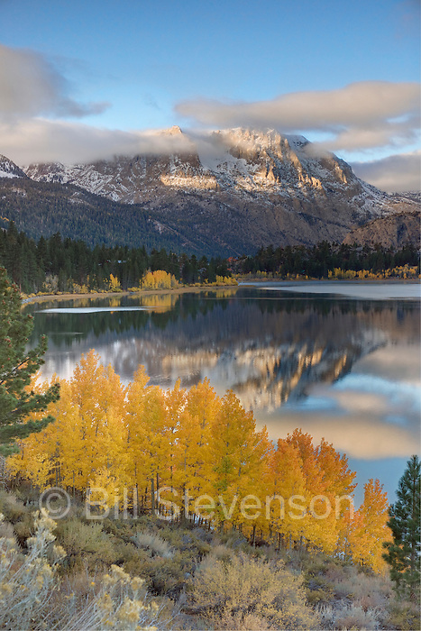 A photo of yellow aspens clouds and a mountain  reflecting in June Lake in the fall in the Sierra mountains of California