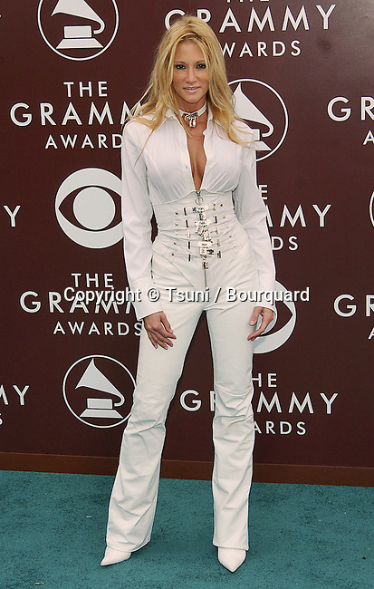 Jessica Drake arriving at the 47th Annual Grammy Awards at the Staples Center in Los Angeles. February 13, 2005.