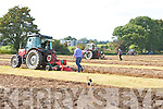 Action from the South Kerry Ploughing Championships in Fossa on Sunday