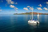 Whale watching, voiliers en baie de Prony devant l'Ile Ouen, Nouvelle-Calédonie