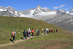 Hikers viewing the Alps near the Matterhorn and the Gornergrat train, Zermatt, Switzerland.