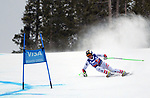 December 1, 2017:  Austria's, Hannes Reichelt #7, on his way to a third place finish in the Super G competition during the FIS Audi Birds of Prey World Cup, Beaver Creek, Colorado.
