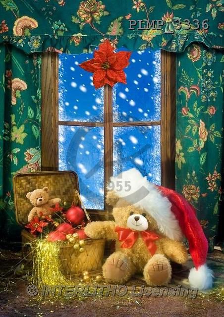 Marek, CHRISTMAS ANIMALS, WEIHNACHTEN TIERE, NAVIDAD ANIMALES, teddies, photos+++++,PLMP3336,#Xa# under Christmas tree,