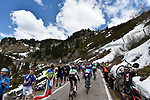 The peloton in action during Stage 20 of the 2019 Giro d'Italia, running 194km from Feltre to Croce d'Aune-Monte Avena, Italy. 1st June 2019<br /> Picture: Fabio Ferrari/LaPresse | Cyclefile<br /> <br /> All photos usage must carry mandatory copyright credit (© Cyclefile | Fabio Ferrari/LaPresse)