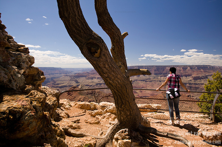 A tourist in a pink checkered shirt admires the view over the Grand Canyon in Arizona, United States of America.