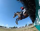 Carolina Cup Races - 03/28/2015