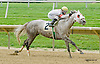 Maria's Song winning at Delaware Park on 8/23/14