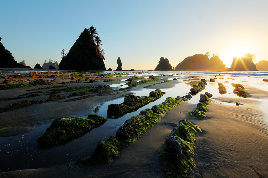 Sunset over ocean waves, sea stacks, rocks and sandy beach, Shi Shi Beach, Olympic National Park, Washington Coast, USA