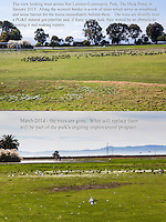 Two panel Before & After of the western edge of an urban park where trees were removed as part of a natural gas pipeline safety project in the San Franciso Bay Area.