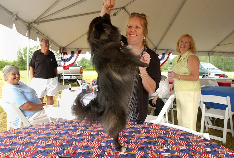 dog/073002 - A dog dances on the table at the opening of Presby Plastics in Whitefield, New Hampshire.