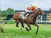 Means Well winning at Delaware Park on 9/28/16